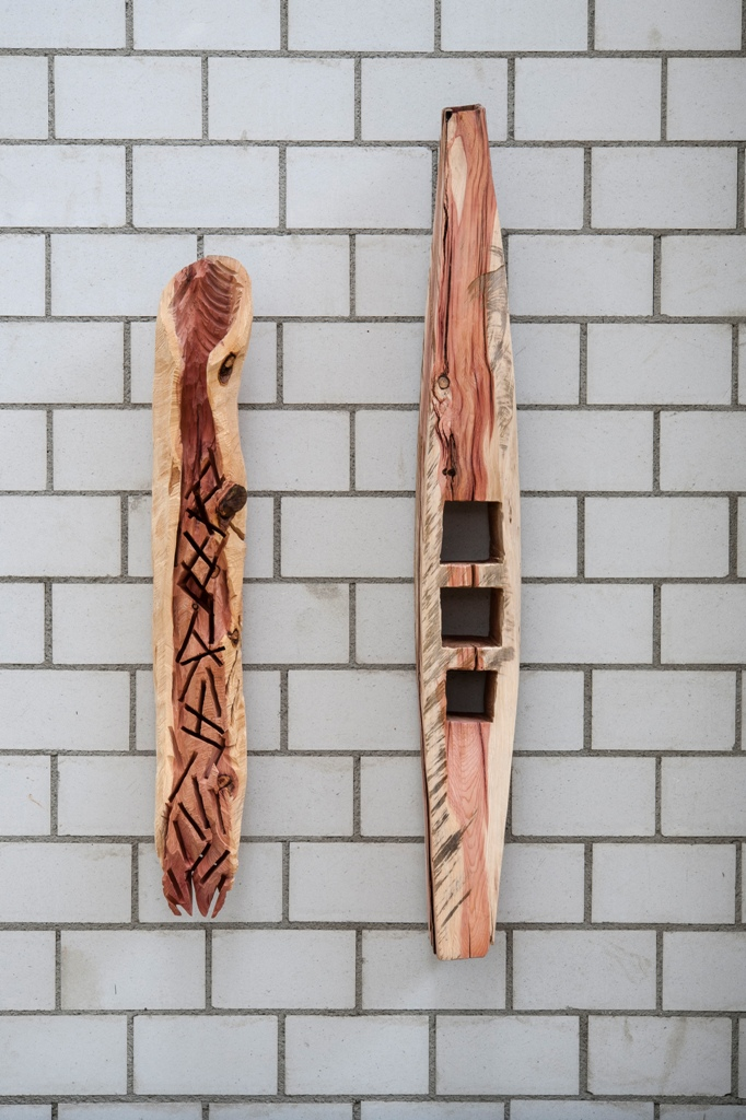 Objekte Mammutbaum 2017